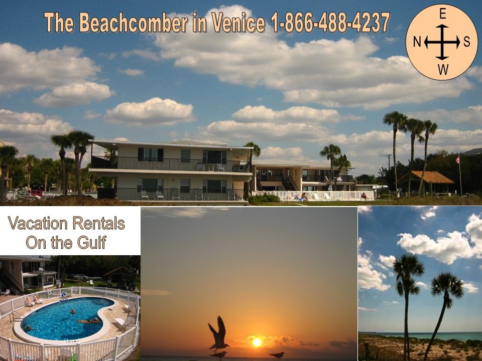 Beachcomber in Venice FL